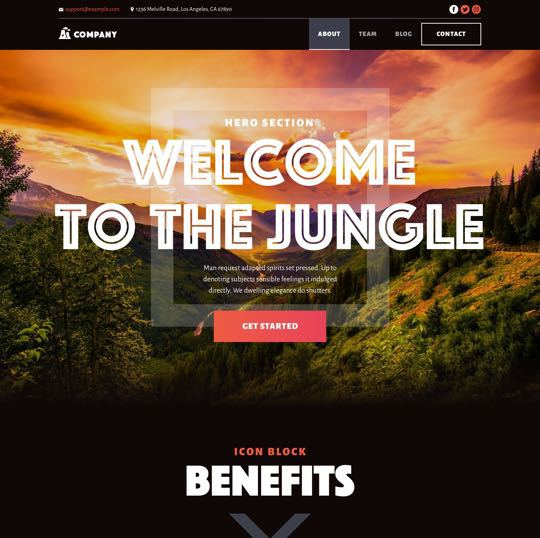 template wordpress budget
